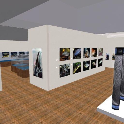 Snapshot-_-XTALENT-Digital-Art-Gallery_05