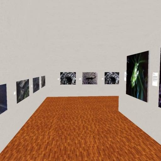 Snapshot-_-XTALENT-Digital-Art-Gallery_21