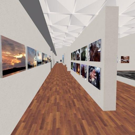 Snapshot-_-XTALENT-Digital-Art-Gallery_30