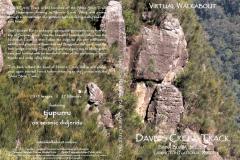 Daves-Creek-Track, Lamington National Park