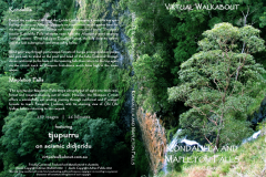 Kondalilla & Mapelton Falls National Parks