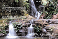 West-Canungra-Creek-Track, Lamington National Park